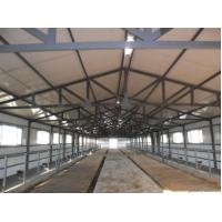 Wholesale Durable Prefabricated Steel Framing Cow / Horse Systems With Flexible High Space Utilization from china suppliers