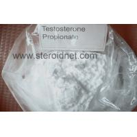Wholesale CAS 57-85-2 Body Building Bulking Cycle Steroids 98.25% Testosterone Propionate from china suppliers