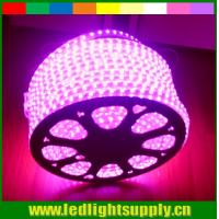 Wholesale whole sale AC LED  110V strip flexible led ribbon 5050 smd pink 60LED/m strip from china suppliers