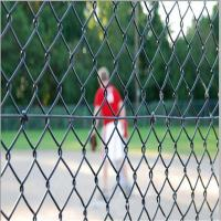 Wholesale galvanized wire pvc coated chain link fence from china suppliers