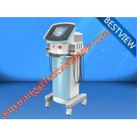 Wholesale HOT!! selling  plant price Vertical Lipolaser BM-166 weight reducing machine from china suppliers