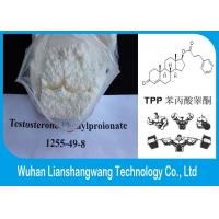 Wholesale Anabolic Musclebuilding Steroid Testosterone Phenylpropionate Powder CAS 1255-49-8 from china suppliers