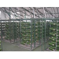 China Artificial Grass Online Marketplace