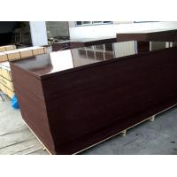 Wholesale Film faced plywood , building concrete plywood , construction plywood from china suppliers