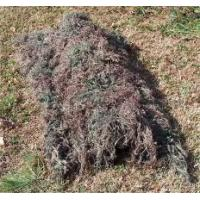 Wholesale Grassplot Camouflage Suit for Army Camping Gear from china suppliers