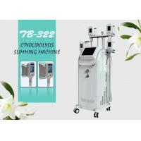 Wholesale 4 Handpieces Cryolipolysis Slimming Machine For Whole Body Fat Freezing from china suppliers