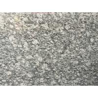 Spary White Polished Granite Floor Tiles Fashionable Appearance