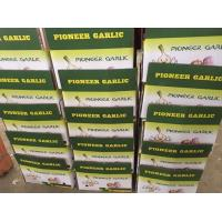 Quality china garlic with lower price for sale