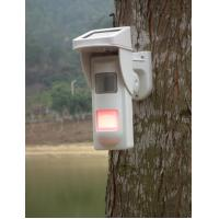 Wholesale Outdoor Independent PIR Sensor Intrusion Alarm System For Warning Deep Water Danger from china suppliers