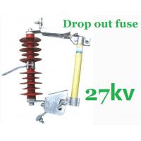 Wholesale 27kV Overhead Line Drop Out Fuse , Polymer Cut Out Fuse Creepage Distance 480mm from china suppliers