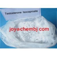 Wholesale Testosterone Isocaproate/ Test Iso Bodybuilding Steroid Raw Androgen Powder from china suppliers