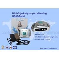Wholesale Home use CryolipolysisPad mini cryolipolysis slimming machine from china suppliers