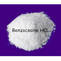 Wholesale Pure Topical  Local Anesthetic Drug 23239-88-5 Raw Benzocaine Hydrochloride, Benzocaine HC from china suppliers