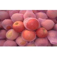 Wholesale Fuji Apple Crisp , Fresh Red Fuji Apple Nutritional Value For Health from china suppliers