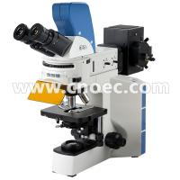 Wholesale Laboratory APO Fluorescence Microscope with Digital Head , 5.0M Camera A16.0909 from china suppliers