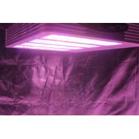 Wholesale 420W indoor farming grow light, greenhouse grow light, ETL, CE, Rohs certified from china suppliers