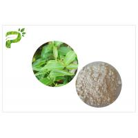 Wholesale CAS 989 51 5 EGCG Green Tea Extract Cosmetic Grades Epigallocatechin Gallate Ingredient from china suppliers