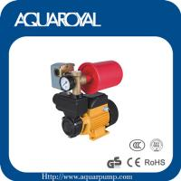 Wholesale Vortex pump,Peripheral pump,Surface pump AU-TPS60 from china suppliers