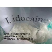 Wholesale Xylocaine Pharma Raw Powder For Local Anethtic Lidocaine CAS 137-58-6 from china suppliers