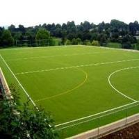 Wholesale Eco friendly Outdoor Artificial Grass , Evergreen artificial grass from china suppliers