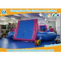 Buy cheap Blue room Pink PVC Tarpaulin Inflatable Football Pitch / Inflatable Soccer Playground on sale from wholesalers