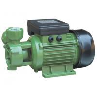 Wholesale DB Peripheral Electric Engine Water Pump 0.37kw Single Phase 50HZ from china suppliers