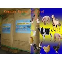 Wholesale Animal Universal Nutrition Compound Enzyme Feed Additive Powder For Regular Daily Diet Szym-nutriRE from china suppliers