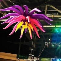 Wholesale Oxford Decor Inflatable Flower Star with LED Light for Party and Event Decoration from china suppliers