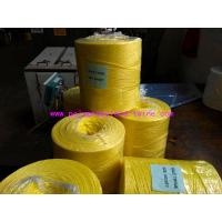 Wholesale High Tenacity 6000D Tomato Tying Twine , Virgin PP Baler Twine UV Treated from china suppliers
