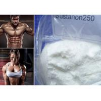 Wholesale Raw Powder Sustanon 250 Bodybuilding Testosterone Blend for Strong Bones and Muscle Mass from china suppliers