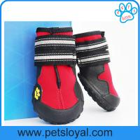 Buy cheap Anti-Slip Waterproof Sole Medium Large Pet Dog Shoes China Factory from wholesalers