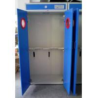 Wholesale Full Steel Gas Cabients HK / Storage Gas Cabints System Iran / Gas Cabinet Two Cylinder UK from china suppliers