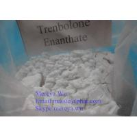 Wholesale Human Growth Hormone Anti Estrogen Steroids CAS 10161-33-8 Trenbolone Base from china suppliers