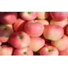 Buy cheap Seasonable Natural Large Fuji Apple Anti-Cancer With Vitamin C , Zinc, Juicy no residue from wholesalers