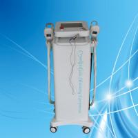 Wholesale 2MHZ RF Cryolipolysis Slimming Machine 10.4'' Touch Color Screen For Fat-Freezing from china suppliers
