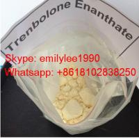 Wholesale Muscle Cutting Anabolic Androgenic Steroids Trenbolone Acetate from china suppliers