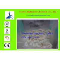Wholesale Bodybuilding Tren Anabolic Steroid Trenbolone Enanthate Tren Muscle Builder 10161-33-8 from china suppliers