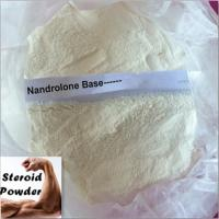 Wholesale 434-22-0 Muscle Building Raw Steroid Powders , Nandrolone Prescription Anabolic Steroids from china suppliers