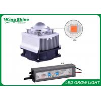 Wholesale Waterproof 50w COB Led Plant Grow Lights Diy For Vegetables And Fruits from china suppliers
