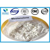 Wholesale Mestanolone Ace Anabolic Oral Steroids For Muscle Gain , Cas 521-11-9 from china suppliers