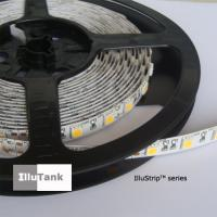 Wholesale DC LED strip light in warm white, SMD5050 60LED/M from china suppliers
