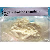 Wholesale Tren E Trenbolone Steroid Dosages and Cycle Length Trenbolone Enanthate from china suppliers