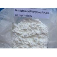 Wholesale White Crystalline Anabolic Steroid Hormones Testosterone Phenylpropionate 1255-49-8 from china suppliers