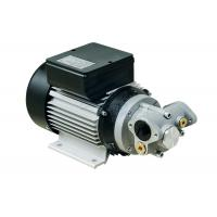 Wholesale Portable Die - cast Aluminum Electric Diesel Transfer Pump 550W AC Gear Type  IP55 from china suppliers