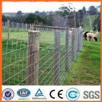 Wholesale cattle farming knotted grassland fence from china suppliers