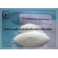Wholesale High Purity Female Prohormone Supplements Norethisterone Enanthate CAS 3836-23-5 from china suppliers