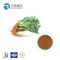 China 100% Pure Nature Plant Extract Powder Radix Isatidis Powder Extract Light Brown Color on sale