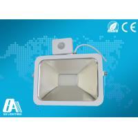 Quality 30Watt Portable Led Flood Light High Brightness Aluminum Housing With CE for sale