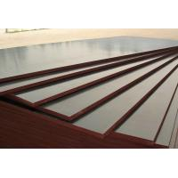 Wholesale 1220mm*2440mm Plywood For Formwork used in construction from china suppliers