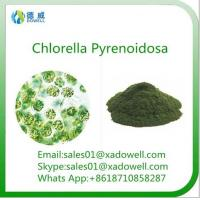 Buy cheap High quality and Natural Beauty Powder Chlorella Pyrenoidosa from wholesalers